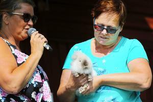 Under kaninparaden visades olika kaninraser upp. Siv Jonsson-Öst från Hara hade med sig en Lejonhuvad kanin.