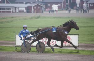 Rikard Skoglund med hästen Global Millionaire. Bilden är en arkvibild.