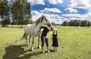 Hästen Bosse är en blandning av Tinker och Shirehäst. Honom rider Emma tornerspel med.