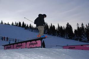 Det var inte bara snowboardåkare som fick delta i Railjam. Skidåkarna hade sin egen klass och representeras på bilden av Patrik Gustafsson.