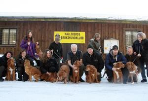 Hela gänget. Utanför Hallsbergs brukshundklubbs innehall samlas Hjälmaretollarna under en rast i träningen.