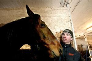 Olle Holms Peasant Opal är en av hästarna Clas Jonsson har i stallet.