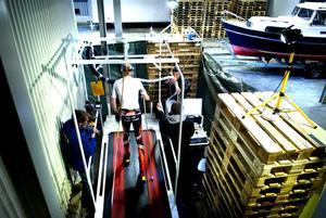 Köldtest. Kalle Gräfnings är testpilot i ett vetenskapligt uppvärmningsprojekt, som leds av Christer Skog och Magnus Knutsson och Daniel Hermansson.