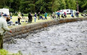 Av samtliga deltagande lagen lyckades Dunderfiskarna från Strömsund bäst. Laget drog upp drygt tolv kilo fisk och vann årets 24-timmarsmete.