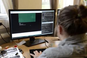 Emil Österlund jobbar till vardags med att bygga hemsidor åt företag. På fritiden är hans intresse programmering.