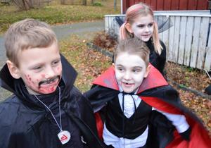 Fullfjädrade. Dracula i dubbel uppsättning. Ludwig Liodden och Elias Johansson gör omgivningen osäker. I bakgrunden syns Cornelia Johansson också Draculalik.