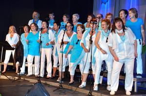 Sång på gång. Qvinnskören bjuder in till allsång. Bilden är från ett framträdande i Lekeberg.