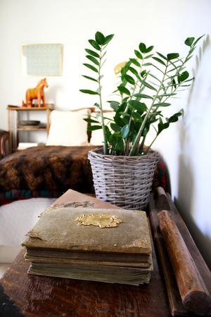 De gamla fotoalbumen kommer från Åsas farmor. Bredvid ligger en gammal mangel gjord av två träpinnar, en rund och en platt.