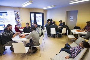 Genom olika aktiviteter kommer de två mötesplatserna, Järvsö och Gärdeåsen, att träffa varandra.