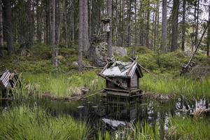 Husen som står i dammen börjar bli medfarna.