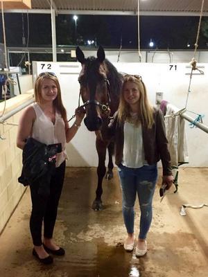 Vi med den svenska hästen Kvintet Avenger som vinner mycket i Australien