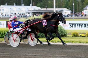 Hagmyrenhästen Hulte Nova, som kördes av Torbjörn Jansson, vann V64-6 på Bollnästravet.