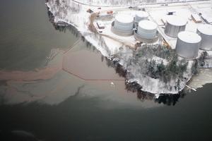 Runt 800 000 liter råtallolja rann ut i havet då en av Arizona Chemicals cisterner sprang läck 2011.