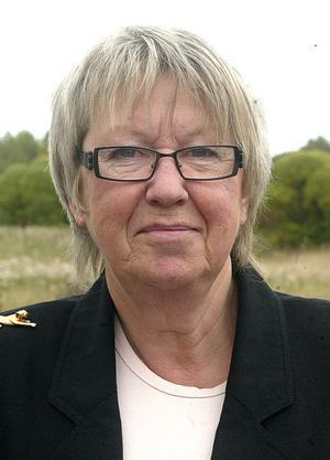 Landstingsrådet Ann Margret Knapp (S) hade hoppats på mer pengar, men menar att det ändå är bättre än ingenting.