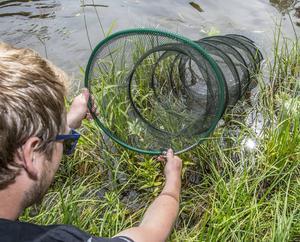 Keep Net - sump - bra att lägga fisken i som du ska släppa tillbaka. Släpper du i fisken direkt så skrämmer de andra fiskar.
