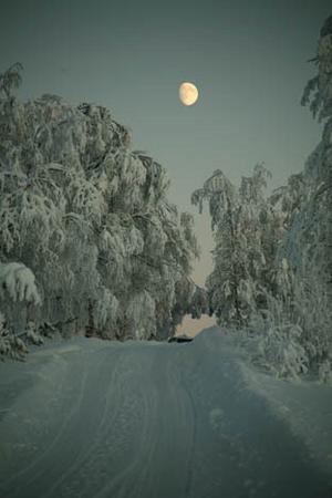 Midvinter på Backvägen i Järpen, skriver Ove Wulff.