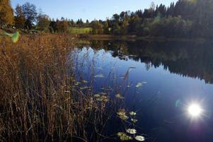 Tolv villatomter planeras på lägdorna ovanför Rännösjön i Matfors. Förberedelserna är i full gång, markägaren har bland annat avverkat en del skog i sluttningen.