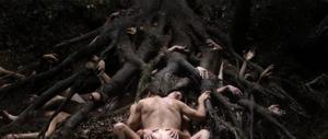 TRIER. Willem Defoe och Charlotte Gainsbourg spelar huvudrollerna i Lars von Triers skräckfilm