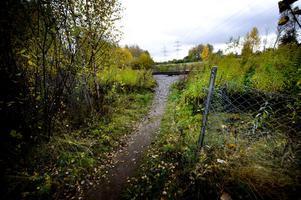 Nära Tallmon har staket klippts upp och många genar över järnvägsspåret.