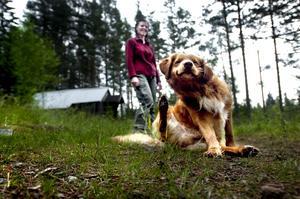 Motionspass. Långa härliga skogspromenader passar tollaren Eddy, som här ses på upptäcktsfärd tillsammans med Helen Sand. Foto:Paulina Håkansson