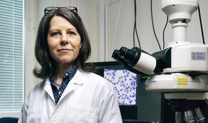 Åsa Wheelock, docent i experimentell lungmedicin, Karolinska institutet.