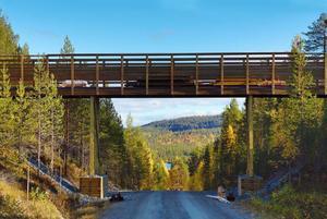 Världens första renbro?Den här skapelsen har monterats vid renslakteriet vid Lossen. Bron är 27 meter lång och lyftes på plats i onsdags.