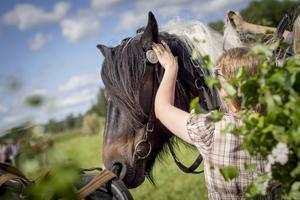 Hästen Brux blir ompysslad av medarrangören Cecilia Bäckius efter uppvisningen i brukskörning.