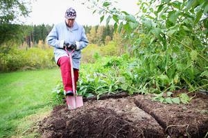 Berit Enunger komposterar för att kunna använda jorden i sina grönsaksland och blomrabatter. I stället för att använda kompostströ tar hon till vara på de kvistar hon skär ner från buskar och träd på våren, och kör dem i sin kompostkvarn.