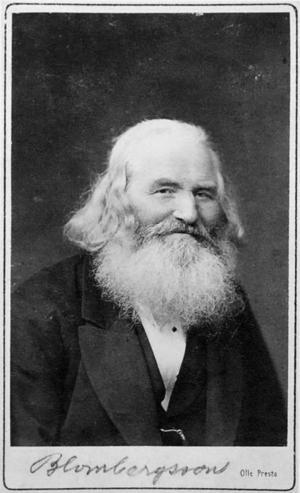 Målaren själv. Ett porträtt av hälsingemålaren Albert Blombergsson, hämtat ur boken av Lars Nylander.