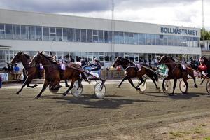 Speedy Gold fick nosen först i försöket i Bronsdivisionen och är nu klar för final på Solvalla.