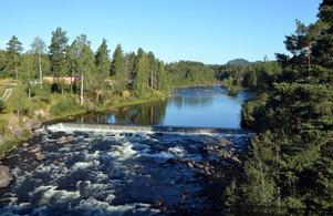 Kommunen driver en rättslig process för att Fortum ska erkänna en fiskväg i Ljungan.