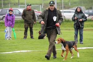 Staffan Ladänges och Västbovallens Key från Edsbyn tävlade bland stövarna.