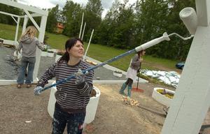 Petra Abrahamsson, en av tre entreprenörsyskon, målar vitt och vitt igen.