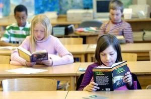 Allt fler lättlästa kapitelböcker ges ut på bekostnad av högläsningsböcker, vilket kan vara ett uttryck för en allmän vilja att förbättra barns läsförståelse.