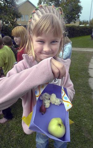 Alva Bergqvist hade spenderat en del pengar och köpt blomkål, äpple och en rädisa.
