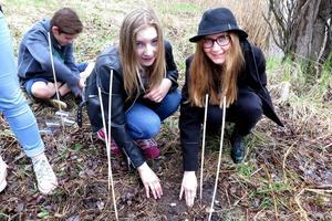 Här har Elin Lindberg och Melinda Hemmingsson grävt ned sin grupps fyra tepåsar. Bakom dem gräver Sirah Dekoning från Gällö.