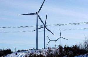 Produktionskostnaden för vindkraft är dubbelt så hög som för vatten- och kärnkraft.  Foto: Thord Nilsson