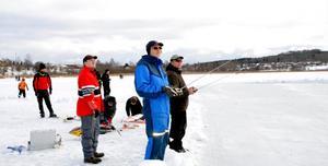 Ett tiotal medlemmar från Södra Dalarnas Radioflygklubb demonstrerade radioflygplan på söndagen. De hade fått en egen landningsbana iordningställd för dagen - Brunnlanda. Vanligtvis landar de på sjön Ljustern i Säter där de har en fast vinterbana som brukar nyttjas på söndagar.