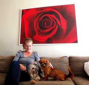 Yorkshireterriern Bella har fått en ny kompis. Här myser hon i soffan tillsammans Mimmi och Jenny. Jenny kan tänka sig att adoptera fler gatuhundar i framtiden.
