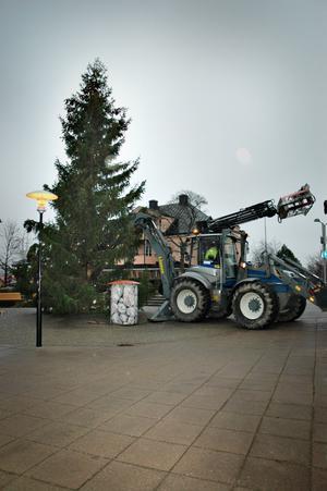 Nu är det jul igen. Julgranen från Vallsbo är på plats på torget och nu är centrum redo för julskyltning på söndag.