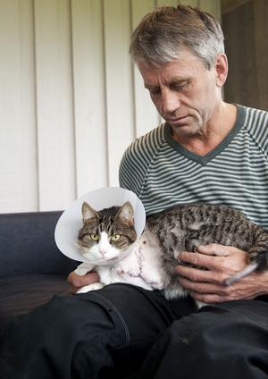 Husse Raimo Mikkola kunde inte svika Zeke när han kom hem och bad om hjälp. Men han hoppas genom att berätta få veta vad som egentligen hänt och vill också varna andra kattägare i området.