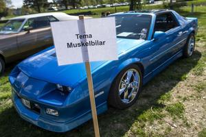 Träffens tema var så kallade muskelbilar, klassiska amerikanska bilar med stora motorer.