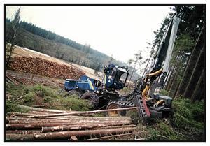 Den helt dominerande skogsbruksmetoden är kalhyggen. Många av de djur- och växtarter som finns i skogen klarar inte den kraftiga påverkan som denna metod innebär, menar insändarskribenten.