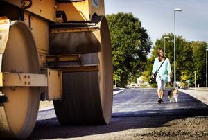 Det verkar bli byggkoncernen Skanska som ska stå för asfaltsbeläggningen i tre av sex hälsingekommuner.