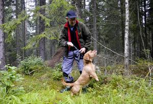 En upplevelse. Tillsammans med sin hund Dellan mötte Sven Rehnberg en björn i skogarna kring Björksjön där han har sitt fritidshus. För Sven var det den största naturupplevelsen hittills. BILD: BIRGITTA SKOGLUND