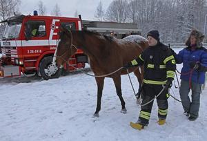En av brandmännen som fick träna på att leda en häst.