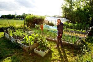 De första åren gick det lite si och så med odlingarna, men så småningom började Stefan Sundström lära sig. Genombrottet kom när han insåg vikten av en bra och näringsrik jord, fick tag i hästskit och lärde sig hur man sköter en kompost.