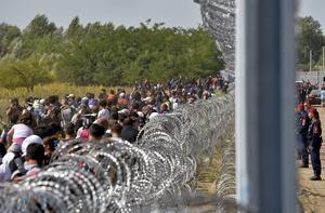 Flyktingar vid den ungerska muren.