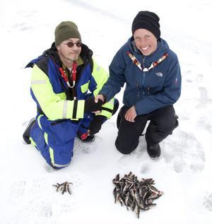 Fiskeredaktören Lasse Hallberg får pisk. Svenska mästaren Mikael Rehnman visar sin klass i att fiska fort - och rätt.