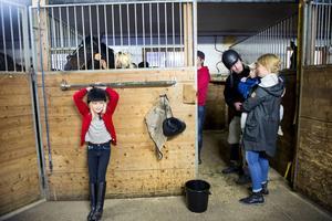 Hela familjen Öhman/ Carlström trivs i stallet men för ovanlighetens skull är det pappa Matti som ska upp på hästryggen. Dottern Ella, sonen Sixten och frun Terese hjälper till när det behövs.